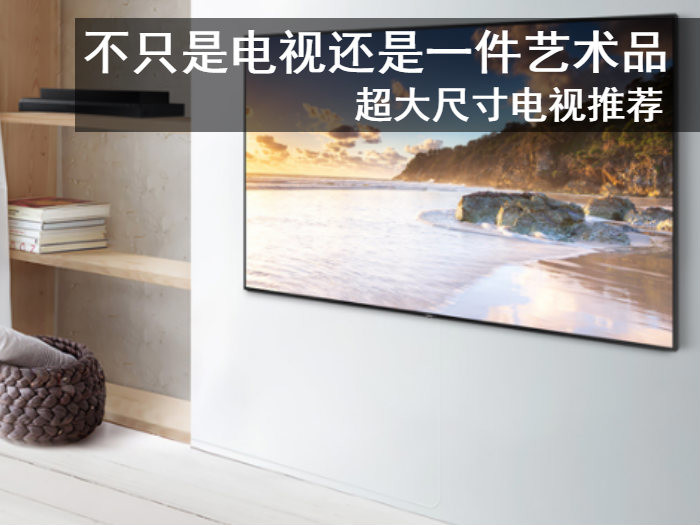 不只是电视还是一件艺术品 超大尺寸电视推荐