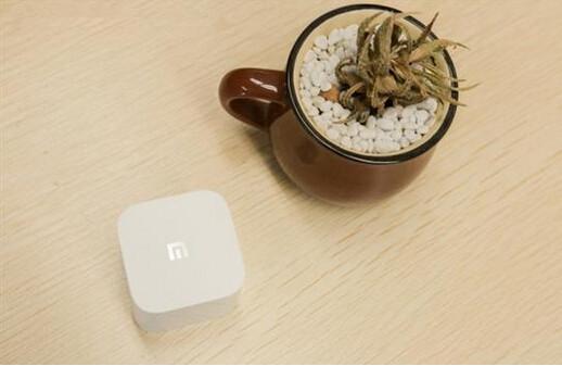 小米盒子mini看直播用什么软件