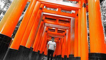 霓虹の国:日本关西8日自由行