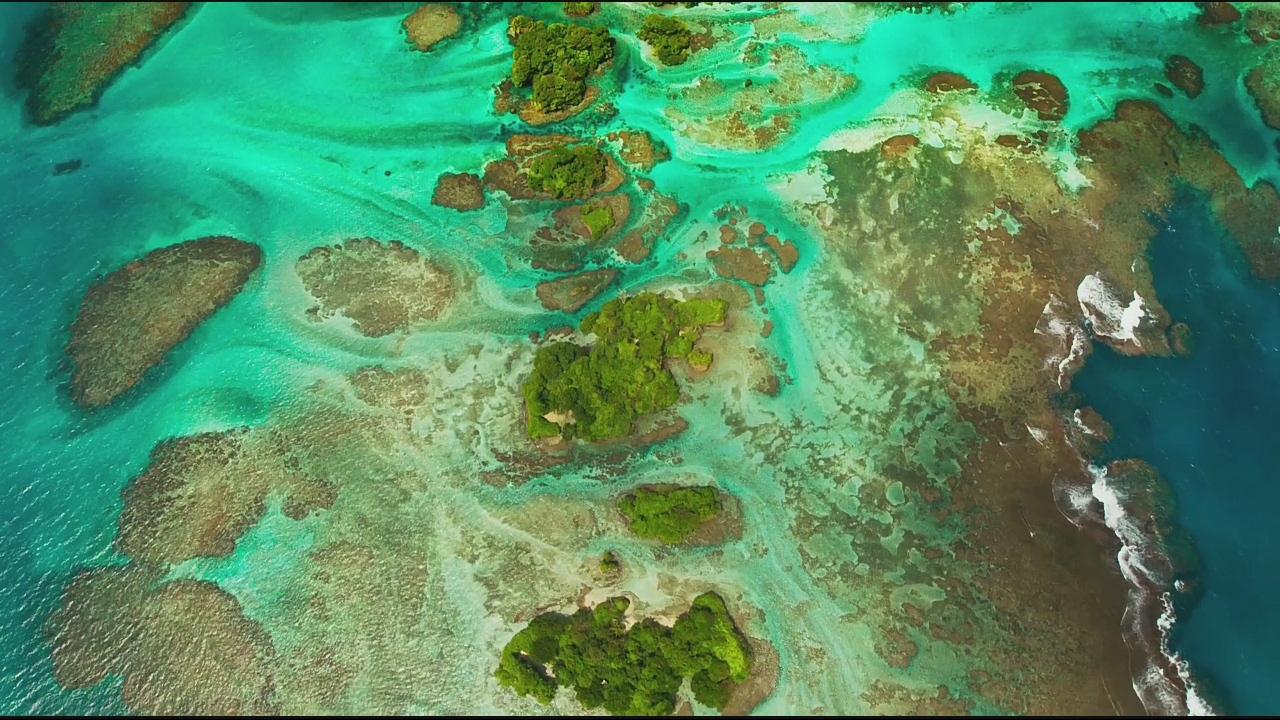 智能电视看4K《Planet Earth-II》教程,每一帧都清晰到可以当壁纸