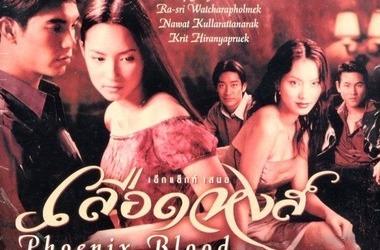 电视盒子怎么免费收看《凤凰血》