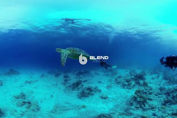 VR视频平台Blend Media获150万英镑融资,累计融资260万英镑