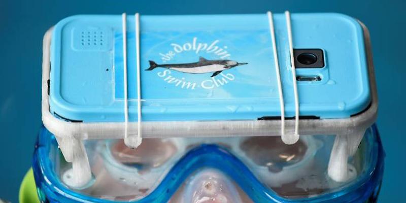 尝试过鱼疗 可VR海豚疗法你试过没?