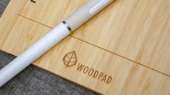 PP闪测 篇七:意外惊喜——优派 WoodPad 10