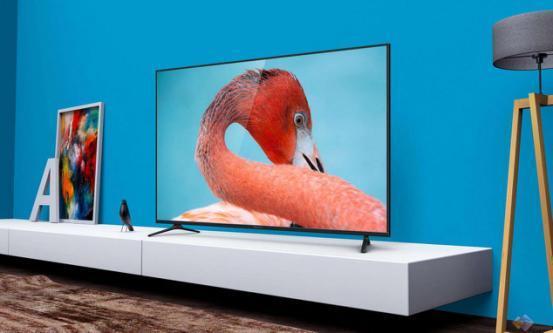 微鲸55D和小米电视4A智能语音对比,谁更智能?